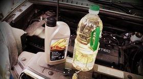 Как выбрать масло для двигателя автомобиля