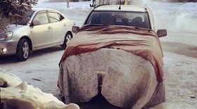 Утеплитель для пола автомобиля