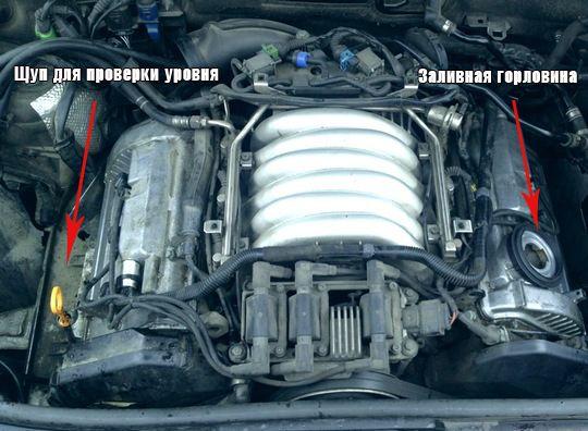 Как заменить масло в Ауди A6 C5